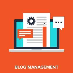 Zdjęcie pokazuje zarządzanie blogiem